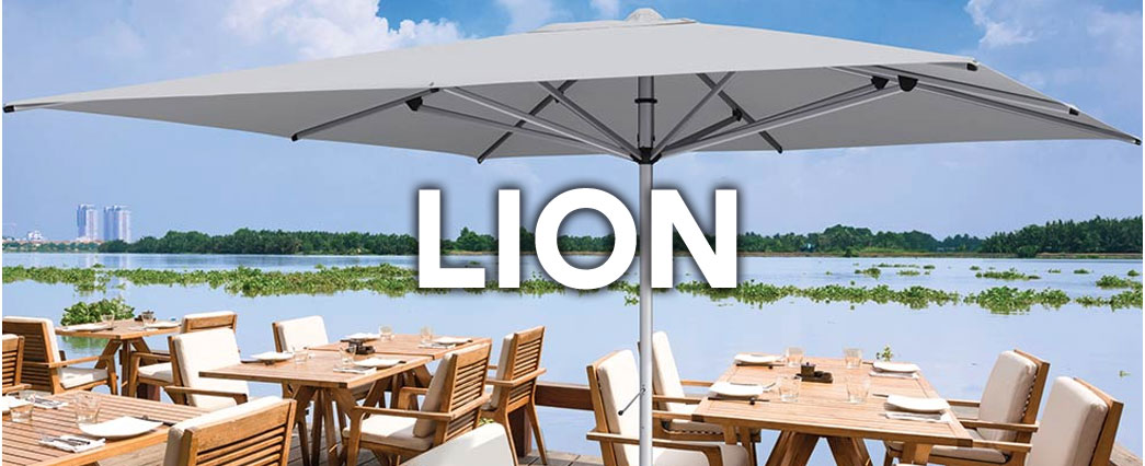Patio Awnings 4 Less  Lion